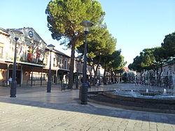 Daimiel Plaza ayuntamiento y olivo milenario.jpg