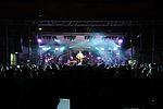 Darius Rucker performs for service members in Spain 141116-N-UI568-263.jpg