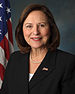 Deb Fischer, official portrait, 113th Congress.jpg