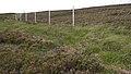 Deer Fence (An Sgòr Dubh) on Mar Lodge Estate (29JUL17) (7).jpg