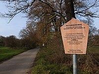 Dessau-Roßlau, Waldersee, Eichenallee.JPG