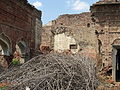 DevanKar Ruins.JPG