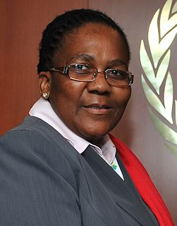 Dipuo Peters South African politician
