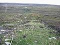 Disturbed Ground - geograph.org.uk - 102218.jpg
