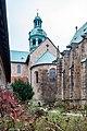 Domhof, Dom, 1000 jähriger Rosenstock Hildesheim 20171201 011.jpg