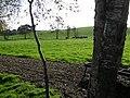 Donaghanie Townland - geograph.org.uk - 1541658.jpg