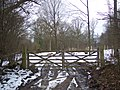 Double gates on an access track into Stumble Wood - geograph.org.uk - 1711650.jpg
