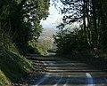 Driveway into Sandridge Park - geograph.org.uk - 1111772.jpg