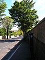Dyke Road Drive - geograph.org.uk - 537604.jpg