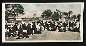 EGYPT - The Oasis of Marg (85) (n.d.) - front - TIMEA.jpg