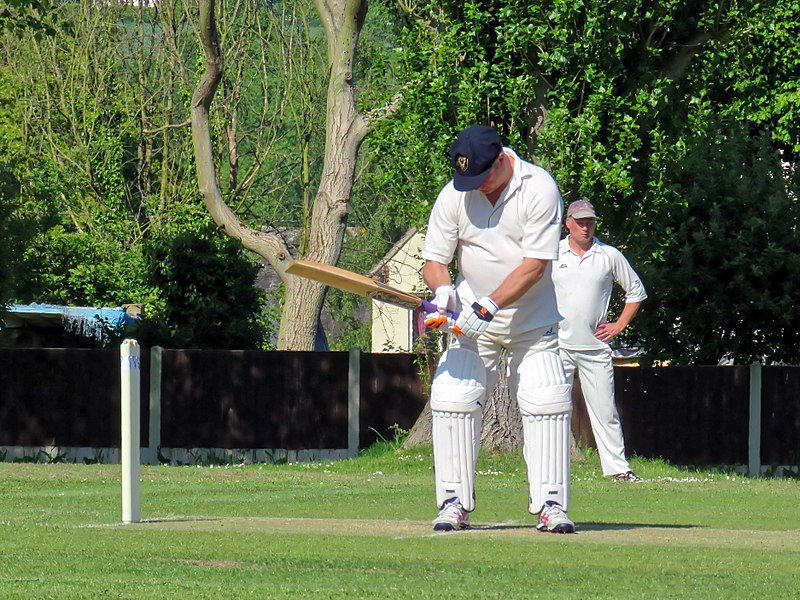 File:Eastons CC v. Chappel and Wakes Colne CC at Little Easton, Essex, England 22.jpg
