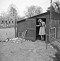 Een jonge vrouw bij de kippenschuur, Bestanddeelnr 252-1946.jpg