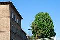 Eichenstraße Arbeiterwohnhäuser 23 Gartenseite-Bahnseite.jpg