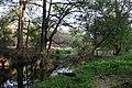 El Sabinal, Aguascalientes (20471945234).jpg