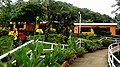 El Salvador - El Balsamar - panoramio (6).jpg