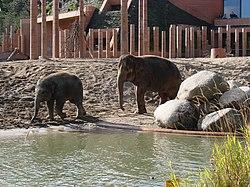 köpenhamns zoo