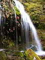 Elk Creek Waterfall in the Bull of the Woods-Mt Hood (23834045311).jpg