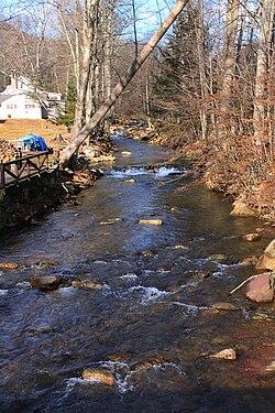Elk Run looking upstream 1.JPG