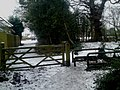 Entrance Gate to Priory's Hill Copse From The Grove Butlocks Heath - geograph.org.uk - 1659270.jpg