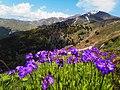 Erzincan Mountains.jpg
