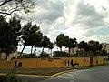 Escuela Taurina Municipal de Camas.jpg