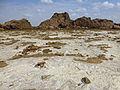 Ethiopie-Exploitation du sel au lac Karoum (9).jpg