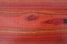 Il legno dell'eucalipto rosso