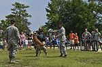 F-35 family fun day 150722-F-MT297-046.jpg