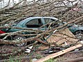 FEMA - 7813 - Photograph by Anita Westervelt taken on 04-27-2002 in Missouri.jpg
