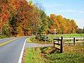 Fall Colors Heading out - panoramio.jpg