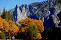 Fall in Yosemite.jpg