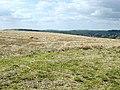 Falmer Hill - geograph.org.uk - 41291.jpg
