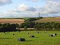 Farmland, Newton Tracey - geograph.org.uk - 964787.jpg