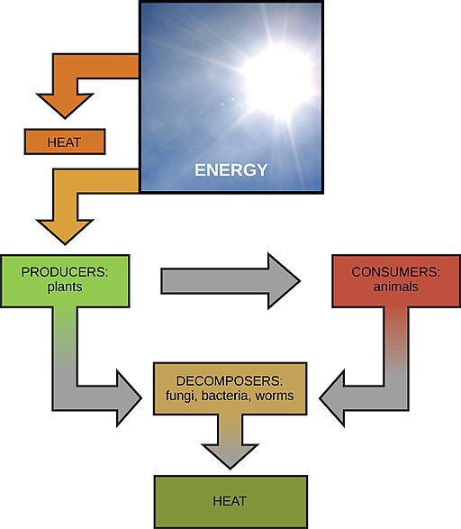 Energy Cycling