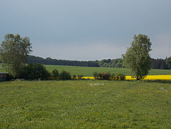 Fingig Fields and Wood North.JPG