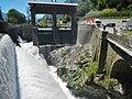 Fiume Adige, Etsch - panoramio (2).jpg