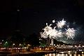 Flickr - Whiternoise - Bastille Day Fireworks, 2010, Paris (8).jpg