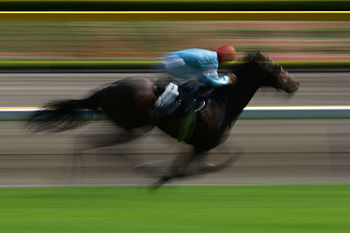 APRIL 26, 2009 - Horse Racing : The Horse raci...