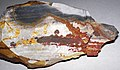 Flint (Vanport Flint, Middle Pennsylvanian; Nethers Flint Quarries, Flint Ridge, Ohio, USA) 200.jpg
