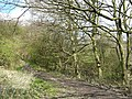 Footpath at Wood Lane - geograph.org.uk - 397175.jpg