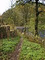 Footpath from The Inn at Whitewell to the stepping stones - geograph.org.uk - 1573358.jpg