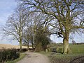 Footpath from Watership Farm - geograph.org.uk - 360813.jpg