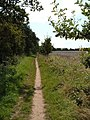 Footpath through farmland at Chilling - geograph.org.uk - 536600.jpg