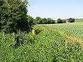 Footpath to Duck Street, Elham - geograph.org.uk - 856722.jpg