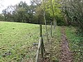 Footpath to Etherow Country Park - geograph.org.uk - 1550177.jpg