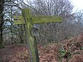 Footpath to Hembury Fort - geograph.org.uk - 35166.jpg