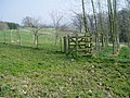 Footpath with kissing gate (1) - geograph.org.uk - 1259155.jpg
