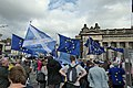 For Democracy, against Brexit (48636934833).jpg