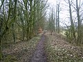 Former Towpath, Lancaster Canal - geograph.org.uk - 1726057.jpg