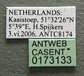 Formica rufa casent0173133 label 1.jpg